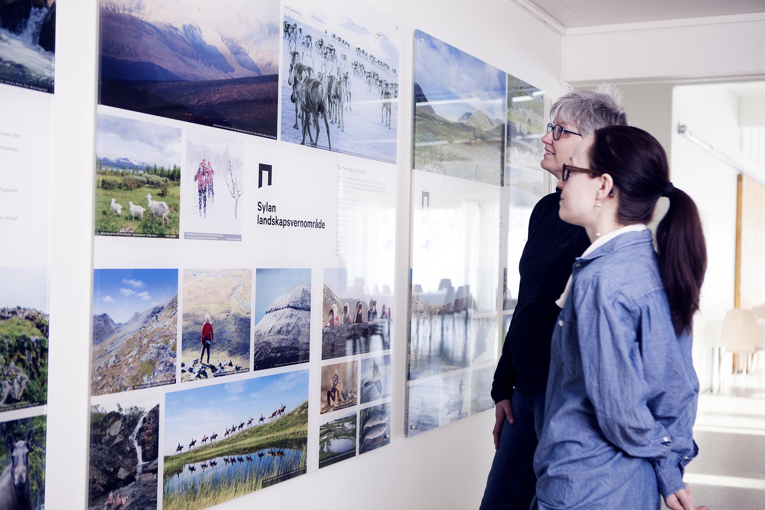 Du kan se utstilling av verneområder som Skarvan og Roltdalen nasjonalpark og Sylan landskapsvernområde på 705 Senteret.